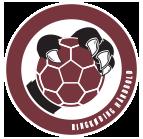 Tømrerfirma Mathiasen byg støtter Ringkøbing Håndbold, logo